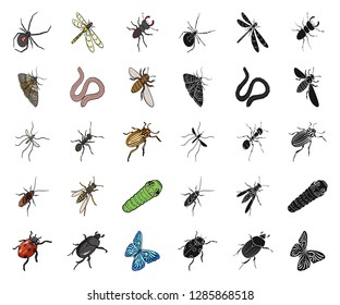 Different kinds of insects cartoon,black icons in set collection for design. Insect arthropod vector isometric symbol stock web illustration.