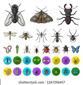 Different kinds of insects cartoon,flat icons in set collection for design. Insect arthropod vector symbol stock web illustration.