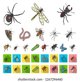 Different kinds of insects cartoon,flat icons in set collection for design. Insect arthropod vector isometric symbol stock web illustration.