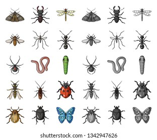 Different kinds of insects cartoon,mono icons in set collection for design. Insect arthropod vector symbol stock web illustration.