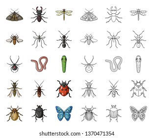 Different kinds of insects cartoon,outline icons in set collection for design. Insect arthropod vector symbol stock web illustration.