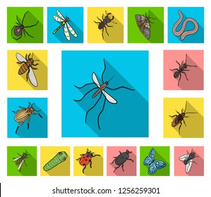 Different kinds of insects flat icons in set collection for design. Insect arthropod vector isometric symbol stock web illustration.