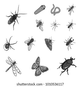 Different kinds of insects monochrome icons in set collection for design. Insect arthropod vector isometric symbol stock web illustration.