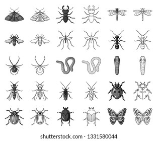 Different kinds of insects monochrome,outline icons in set collection for design. Insect arthropod vector symbol stock web illustration.