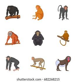 Different kinds of monkeys icons set. Cartoon set of 9 different kinds of monkeys vector icons for web isolated on white background