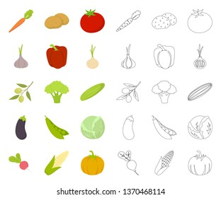 Different kinds of vegetables cartoon,outline icons in set collection for design. Vegetables and vitamins vector symbol stock web illustration.