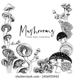 Different mushrooms. Poster, card, t-shirt composition, hand drawn style print. Vector black and white illustration.