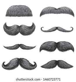 Different styles of male realistic mustaches set. Chevron, Dali, english, handlebar, imperial, lampshade, painter brush, classic relaxed, thick thin man mustaches isolated.