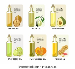 Different tipes of vegetable oils in glass bottles. Walnut, olive, avocado, grapeseed, pumpcinseed and peanut. Colorful vector illustration.