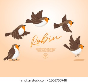 Different type of birds collection : Flying Robin : Vector Illustration