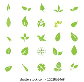 different type of leaf icons