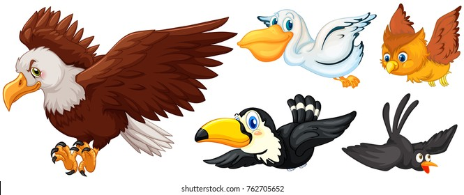 Different types of birds flying illustration