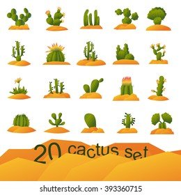 cactus plants images stock photos vectors shutterstock