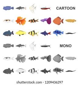 Set Aquarium Fish Isolated On White Stock Vector Royalty Free