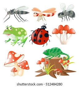 Different types of insects illustration