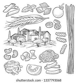 Different types macaroni. Farfalle, conchiglie, maccheroni, fusilli, penne, pipe, spaghetti, ruote, fettuccine, tomato, ear wheat and farm. Vector vintage black engraving isolated on white