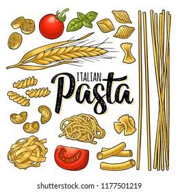 Different types macaroni and ITALIAN PASTA handwriting lettering. Farfalle, conchiglie, maccheroni, fusilli, penne, pipe, spaghetti, ruote, fettuccine, tomato, wheat. Vector vintage color engraving