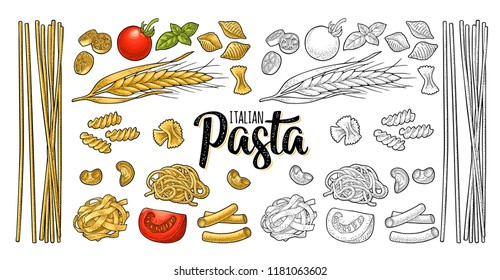 Different types macaroni and ITALIAN PASTA handwriting lettering. Farfalle, conchiglie, maccheroni, fusilli, penne, pipe, spaghetti, ruote, fettuccine, tomato, wheat. Vector vintage color engraving