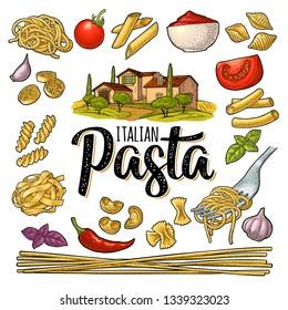 Different types macaroni. ITALIAN PASTA handwriting lettering. Farfalle, conchiglie, maccheroni, fusilli, penne, pipe, spaghetti, ruote, fettuccine tomato, wheat farm. Vector vintage color engraving