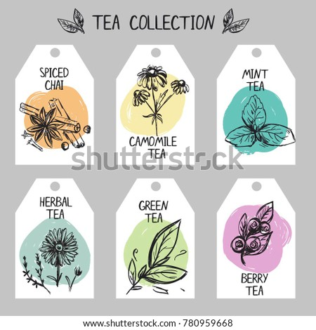 Different Types Teas Set Tags Hand Stock Vector Royalty Free