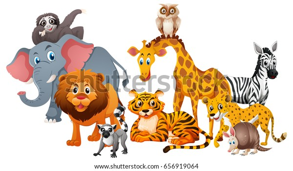 Different Types Wild Animals On White Stock Vector (Royalty Free ...