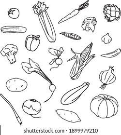 Different vegetables hand drawn vector set, outline. Perfect as background, pattern, for coloring books