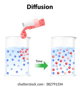 Diffusion - process in physics. Particles in a glass of water randomly move around, the particles will eventually become distributed randomly and uniformly.