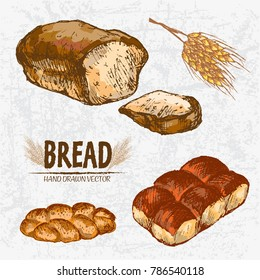 Digital color vector detailed line art golden loaves of rye and braided bread, dinner roll, wheat hand drawn illustration set. Thin outline. Vintage ink flat, engraved mill doodle sketches. Isolated