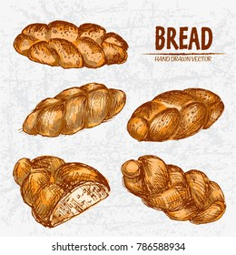 Digital color vector detailed line art golden loaves braided bread, sliced cut, wheat hand drawn illustration set. Thin artistic outline. Vintage ink flat, engraved mill doodle sketches. Isolated