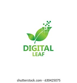 Digital Leaf Logo Template
