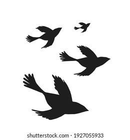 Digital silhouettes of birds. Bird vector illustration. Element for cricut.