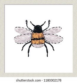 Digital watercolor small funny bee. Hand drawn insect illustration, detailed vector art. Isolated bug on white background in a light-colored wooden frame.