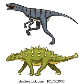 Dinosaur Ankylosaurus, Talarurus, Velociraptor, Euoplocephalus, Saltasaurus, skeletons, fossils. Prehistoric reptiles, Animal engraved Hand drawn vector.