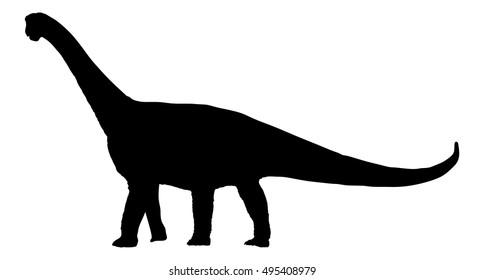 Dinosaur brachiosaurus; brontosaurus; diplodocus vector silhouette illustration isolated on white background.