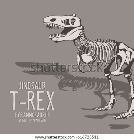 7dea4082e Dinosaur Skeleton Illustration Typography Tee Shirt Stock Vector ...