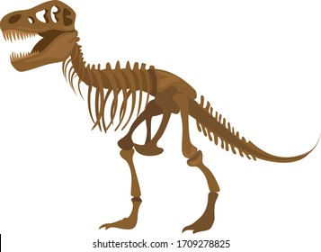 Dinosaur skeleton, illustration, vector on white background