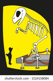 Dinosaur skeleton in a museum with a man looking at it. Cartoon vector illustration.