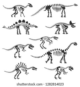 Dinosaur skeletons set. Dinosaur bones silhouettes, isolated objects. Velociraptor, Diplodocus, Triceratops, Tyrannosaurus, etc. Vector illustration