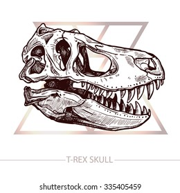 Dinosaur Skull. Drawing Of T-Rex Skull