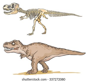 Dinosaur T-Rex. Cartoon image as a skeleton and flesh.