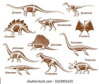Dinosaurs decorative icons set with description text in hand drawn style isolated vector illustration