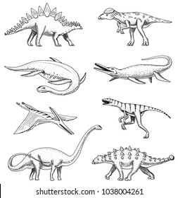 Dinosaurs elasmosaurus, mosasaurus, barosaurus, diplodocus, pterosaur, ankylosaurus, triceratops, fossils, winged lizard American Prehistoric reptiles Jurassic Animal engraved Hand drawn vector
