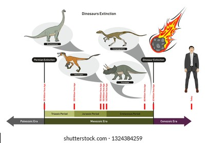 Dinosaurs Extinction infographic diagram showing paleozoic mesozoic cenozoic eras and dinosaurs periods including triassic jurassic cretaceous million years ago for geology science education