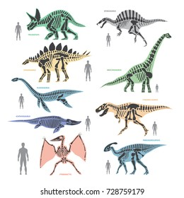 Dinosaurs skeletons silhouettes bone animal and jurassic monster predator dino vector flat illustration