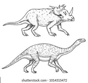 Dinosaurs Triceratops, Barosaurus, Apatosaurus, Tenontosaurus Plateosaurus, broad lizard, Massospondylus, Diplodocus, Brachiosaurus, skeletons, fossils. Prehistoric reptiles, Animal Hand drawn vector
