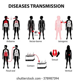 disease transmission. infectious disease. communicable disease. Medical infographic. Set elements and symbols for your design. Woman and man silhouette with highlighted internal organs