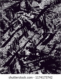 Distressed background in black and white texture from agave cacti with  dark spots, scratches and lines. Abstract vector illustration