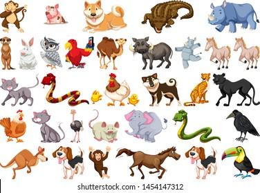 Diverse set of isolated animals on white illustration