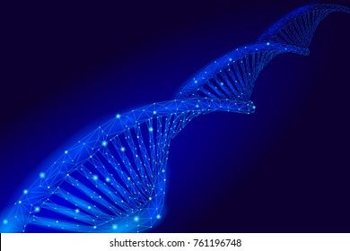 DNA 3D chemical molecule structure low poly. Polygonal triangle point line healthy cell part. Microscopic science blue medicine genome engineering vector illustration future business technology
