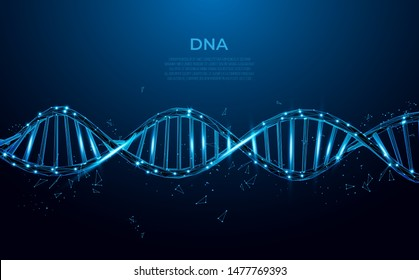 DNA. Abstract 3d polygonal wireframe DNA molecule. Medical science, genetic biotechnology, chemistry biology, gene cell concept vector illustration or background.
